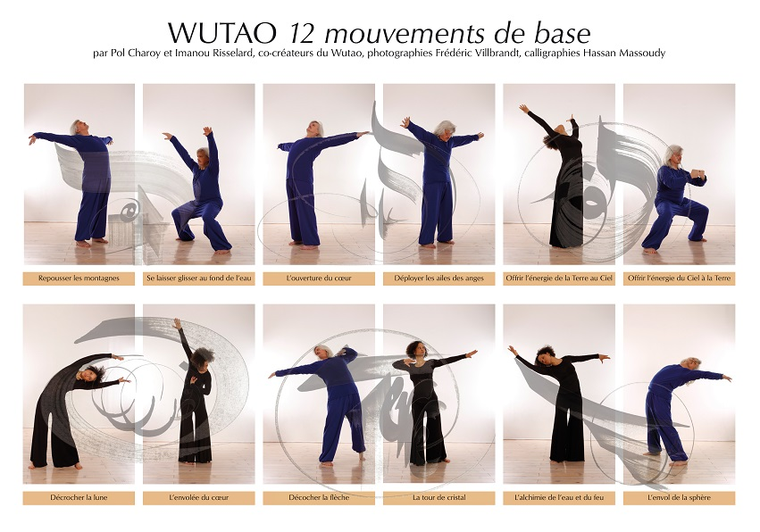 12 mouvements de Wutao