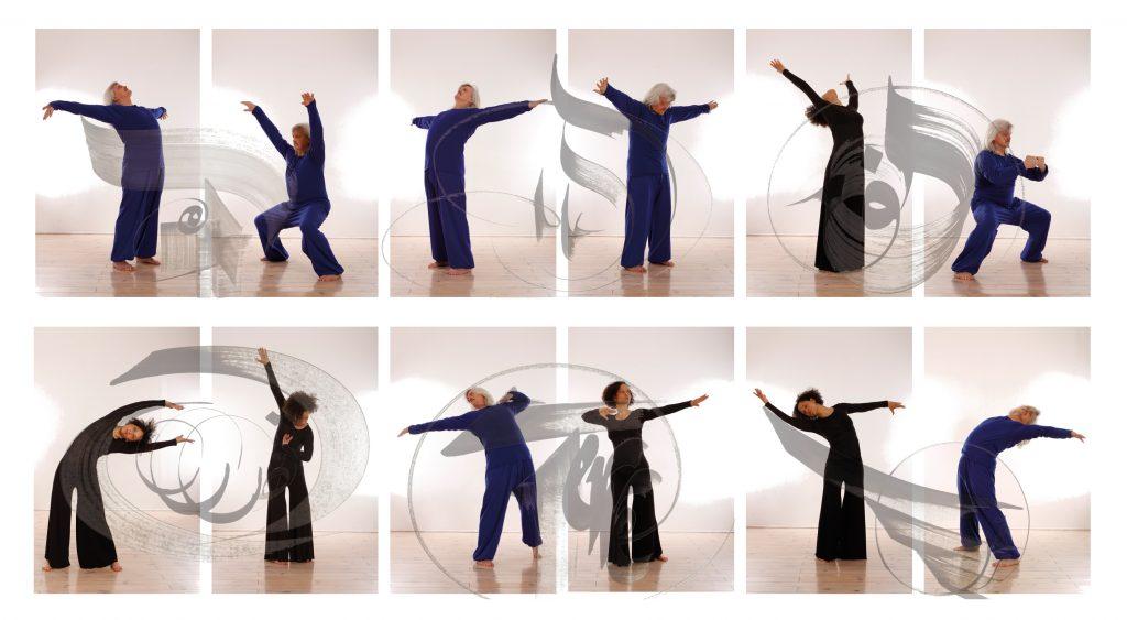 12 mouvements de Wutao